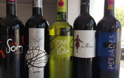 promocion vinos 400x250 - Blog